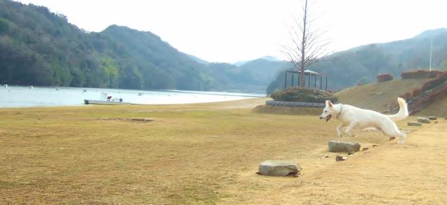 ゆのと森重塾 25 Jan 15 113 (640x294)