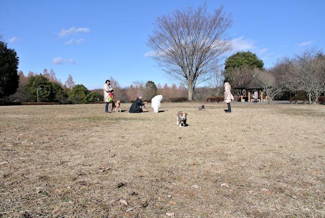 2014長岡公園1400