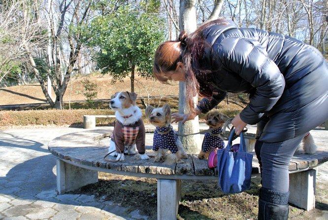 2015長岡公園0007