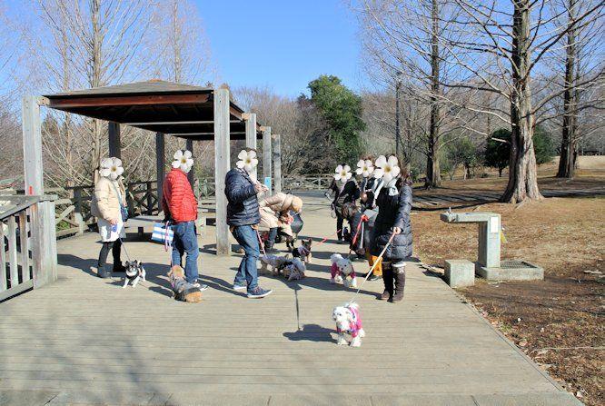 2015長岡公園0055