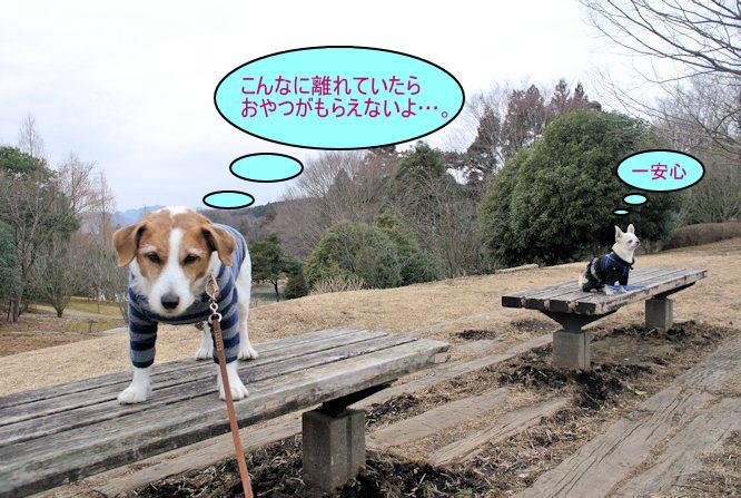 2015長岡公園0245