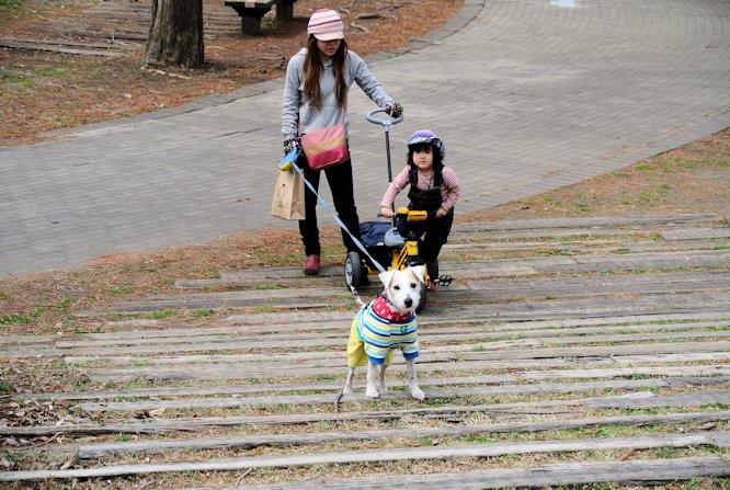2015長岡公園0392
