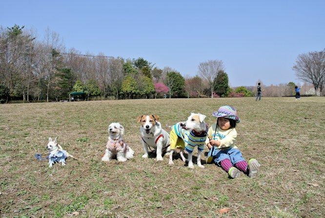 2015長岡公園0410