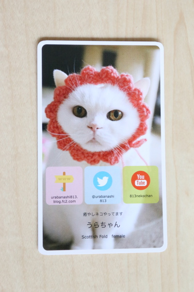 IMG_1600urabanashi.jpg