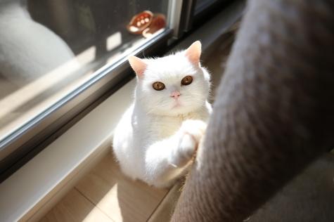 IMG_3522urabanashi.jpg