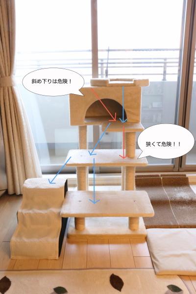 IMG_6912urabanashi.jpg