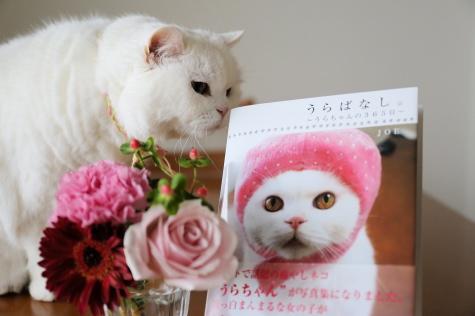 IMG_7430urabanashi.jpg