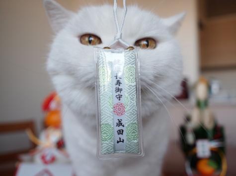 P1044355urabanashi.jpg