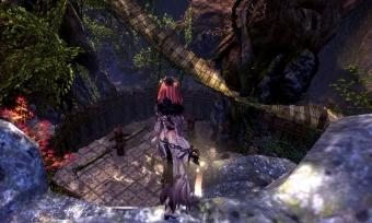 幻夜の森02