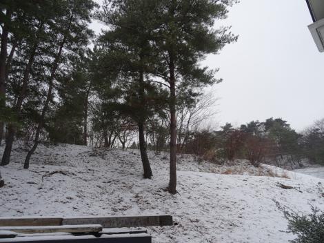 2014.12.14 雪