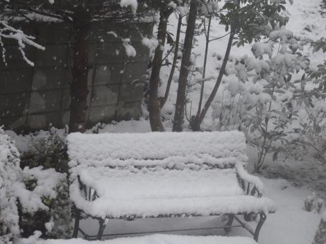 2014.12.17 雪