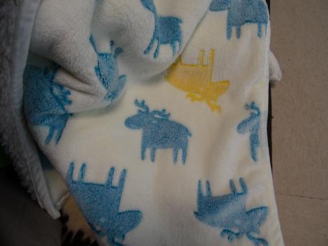 毛布がこんもり