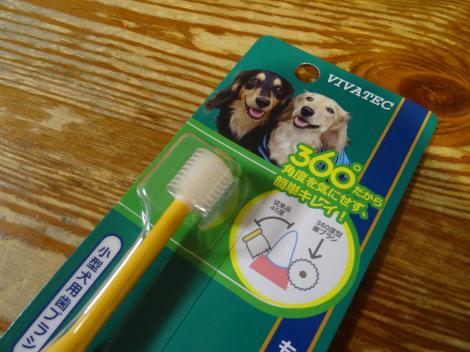 360℃ブラシの歯ブラシ
