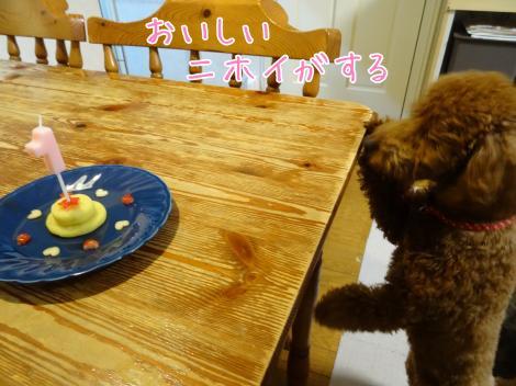 1歳・バースデーケーキ