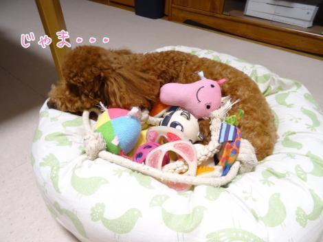 おもちゃがいっぱい