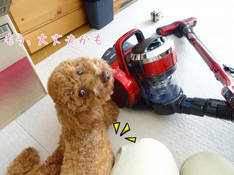 新しい掃除機