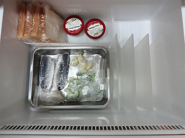 冷凍庫整理ブックスタンド