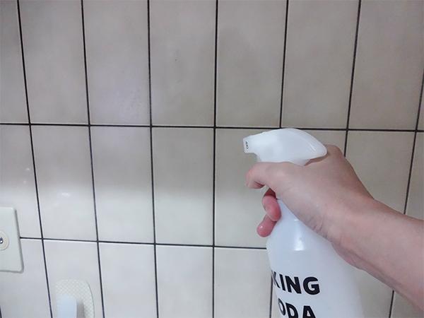 重層水掃除