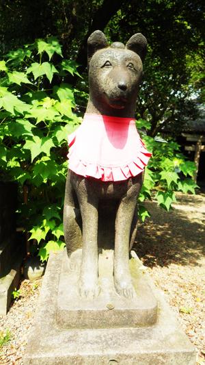 三囲神社 お狐さま