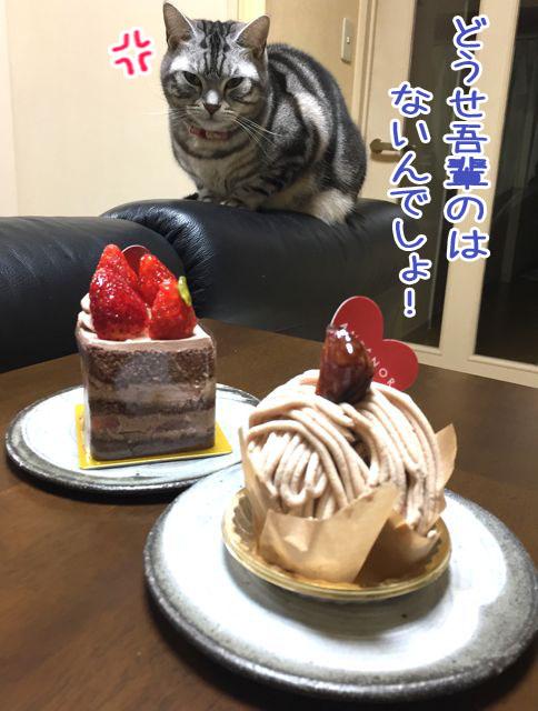 ポーとケーキ