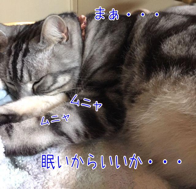 眠いからいいか