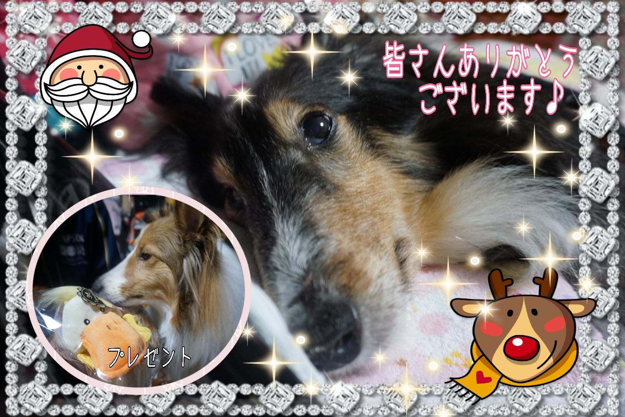 2014-12-25-01-34-20_deco_20141225072914b2f.jpg