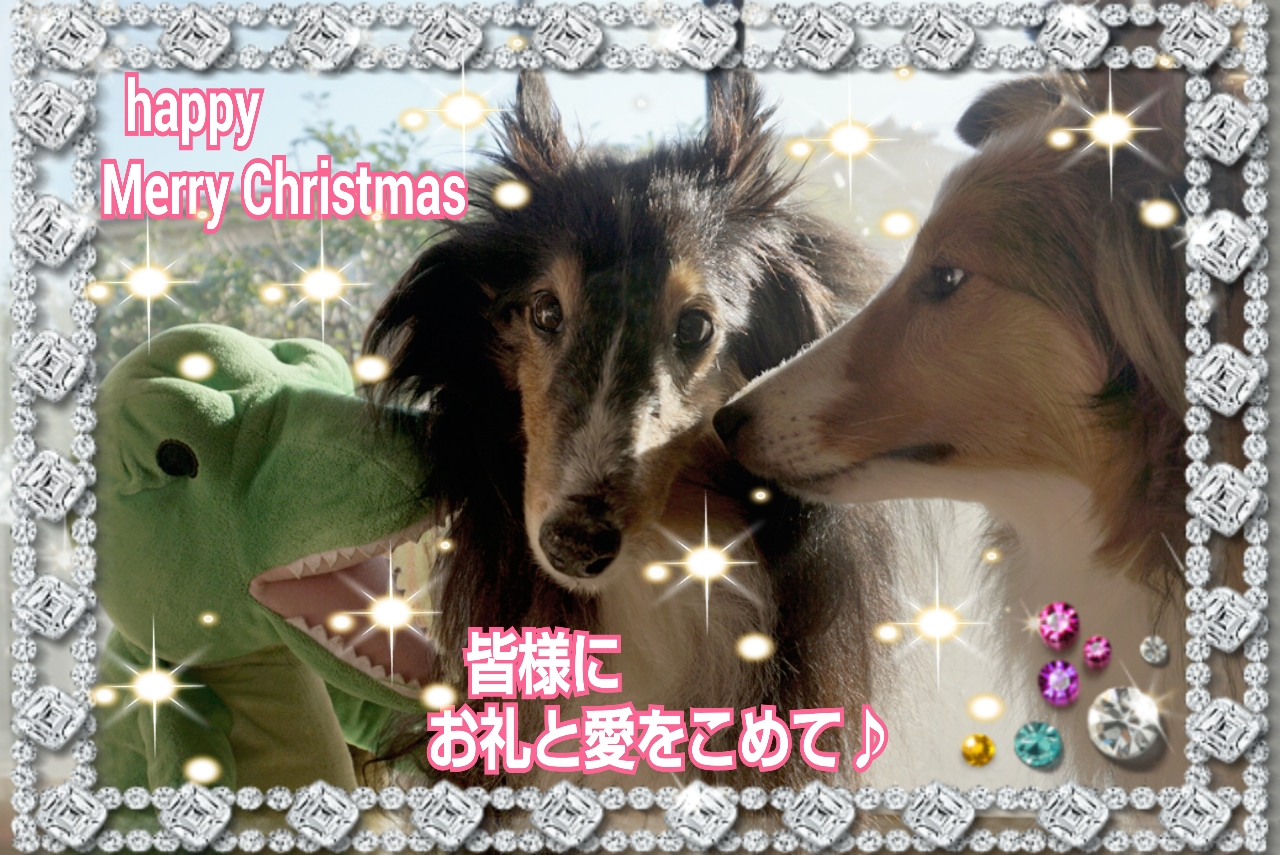 2014-12-25-01-38-55_deco.jpg