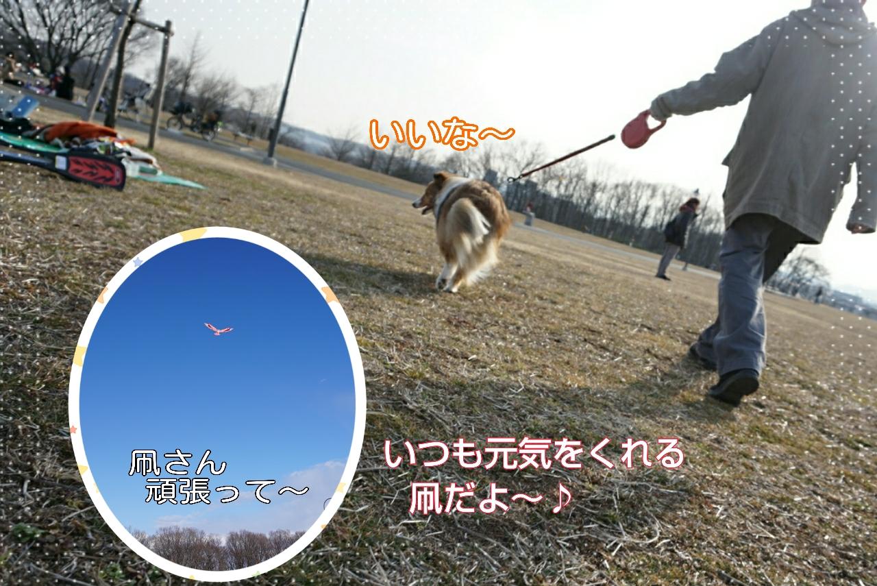 2015-02-21-23-59-02_deco.jpg
