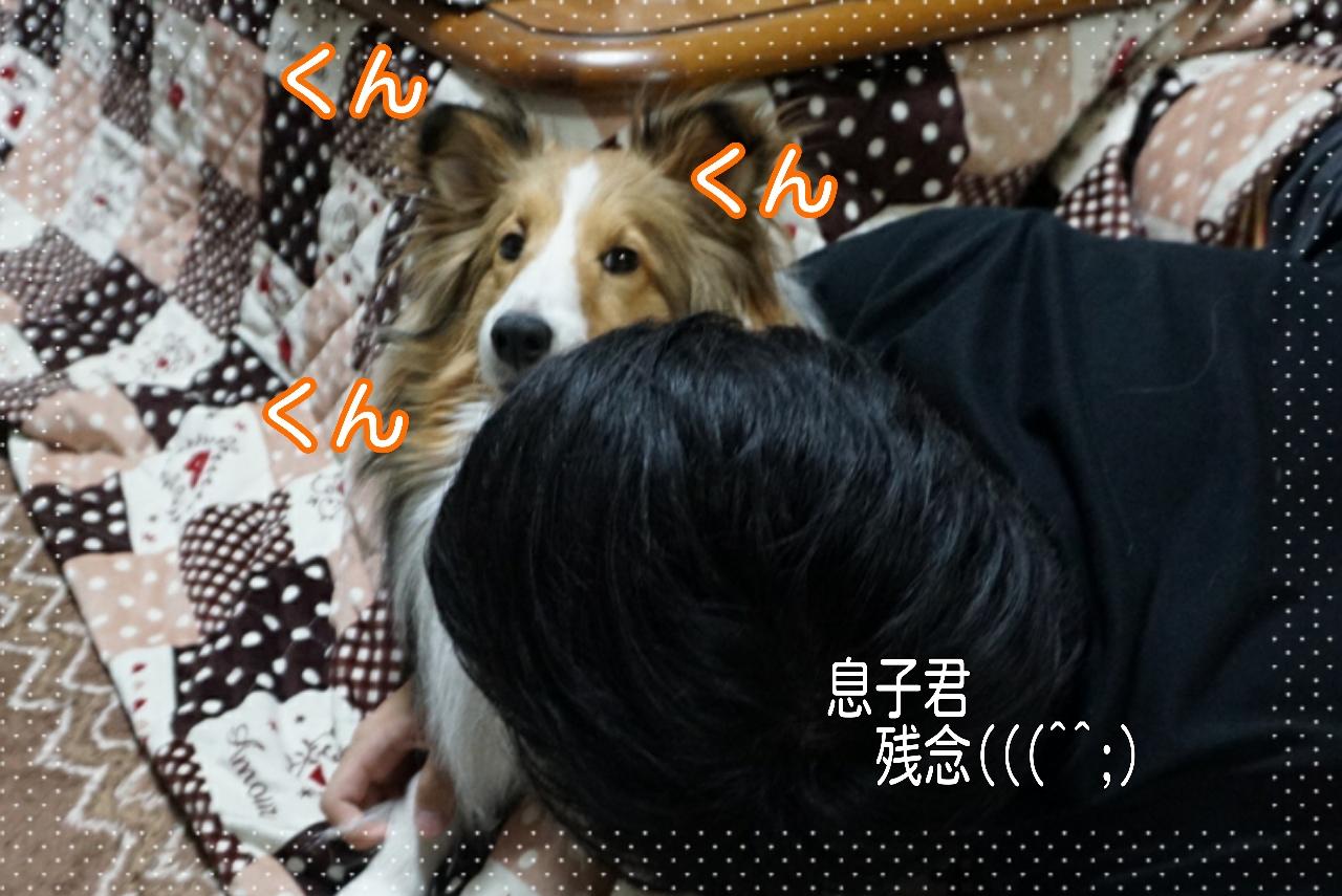 2015-02-22-22-06-04_deco.jpg