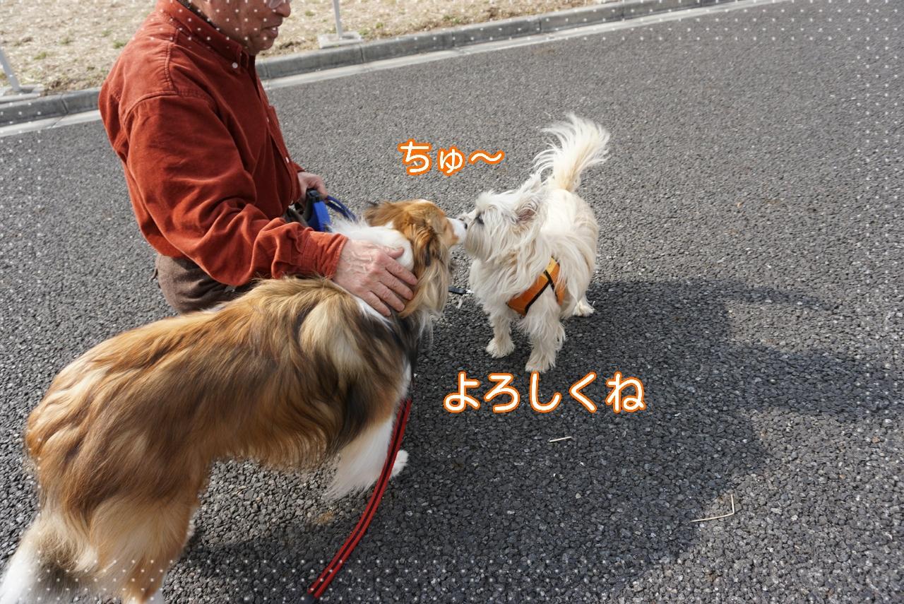 2015-02-23-14-59-41_deco.jpg