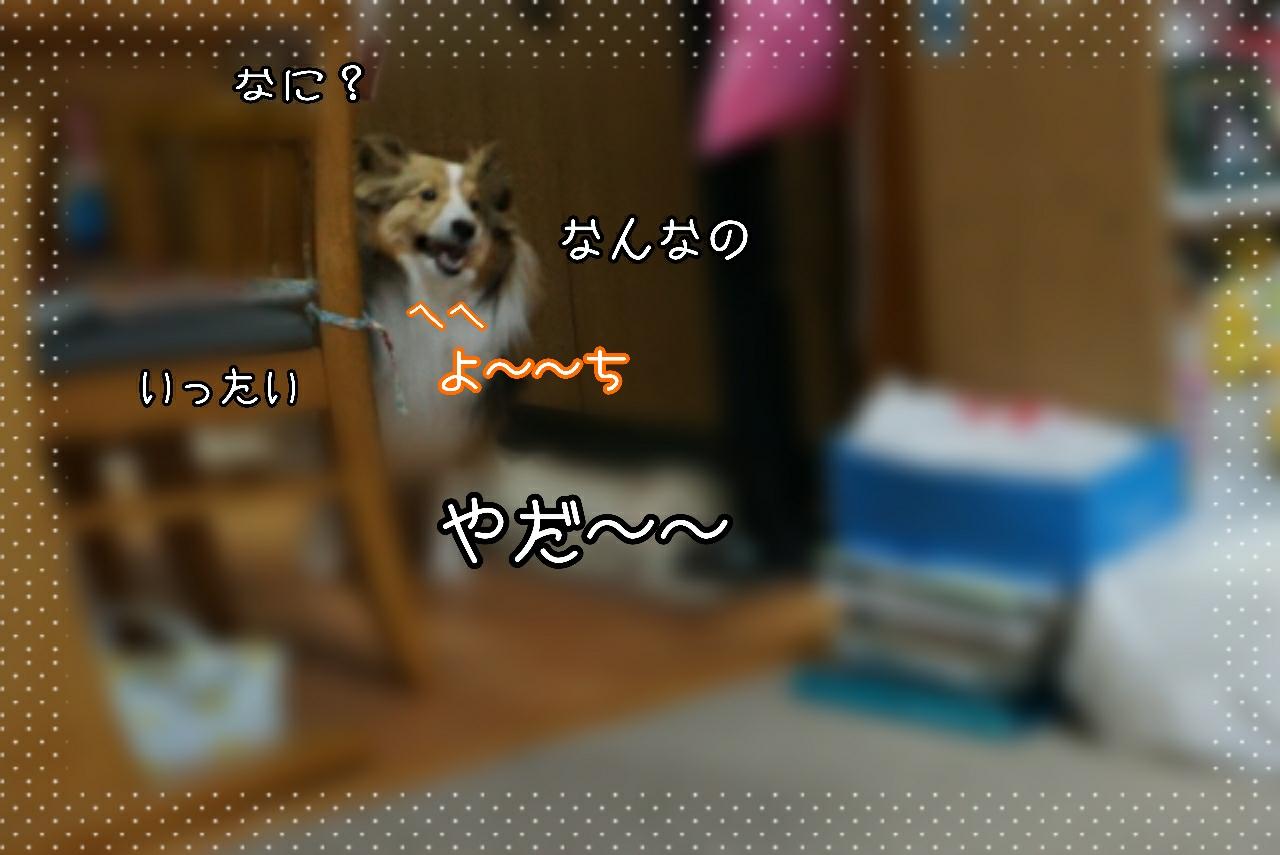 2015-03-03-23-53-14_deco.jpg