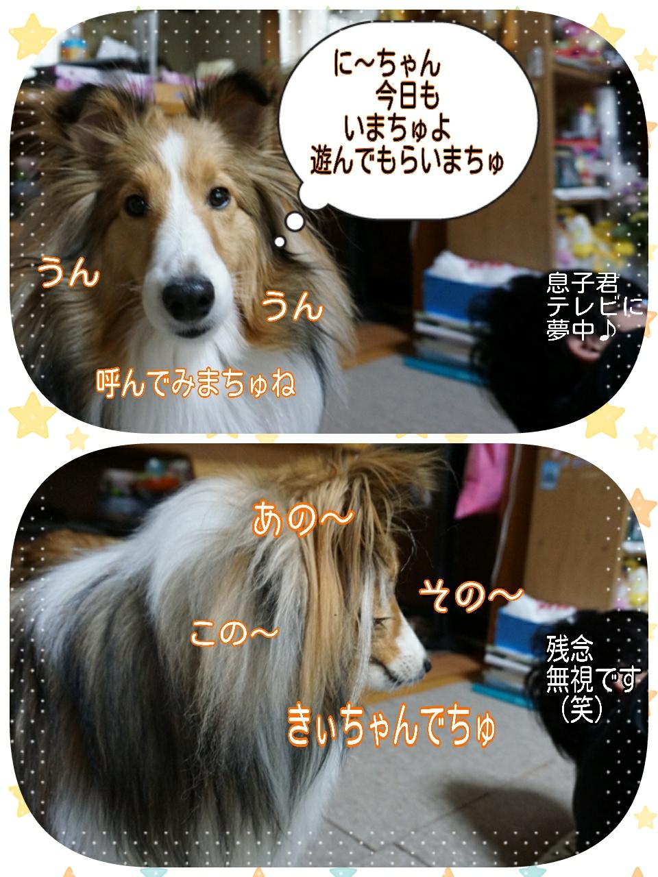 2015-03-04-00-17-39_deco.jpg
