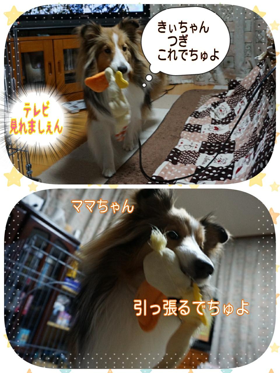 2015-03-11-07-25-40_deco.jpg