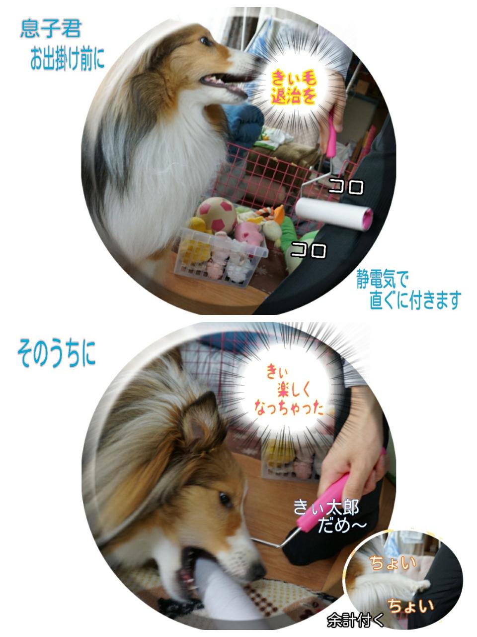 2015-04-01-10-47-15_deco.jpg