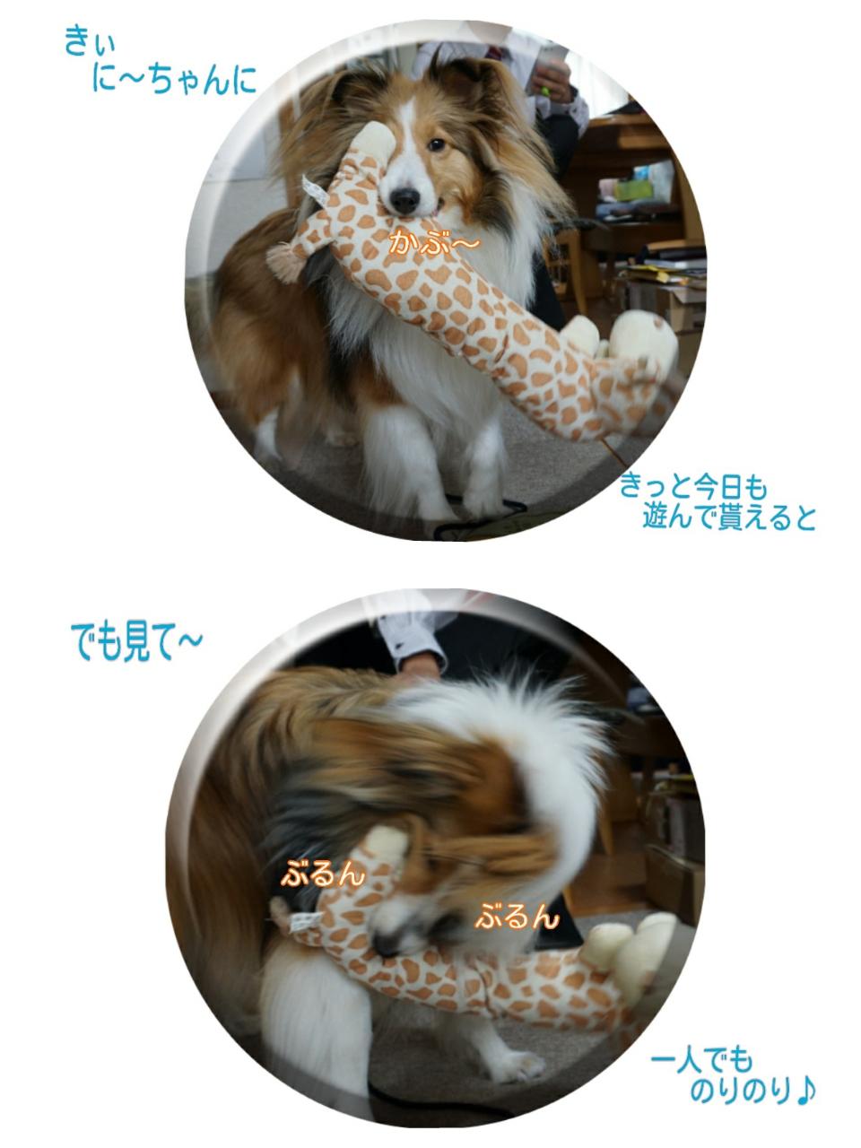 2015-04-01-10-49-24_deco.jpg