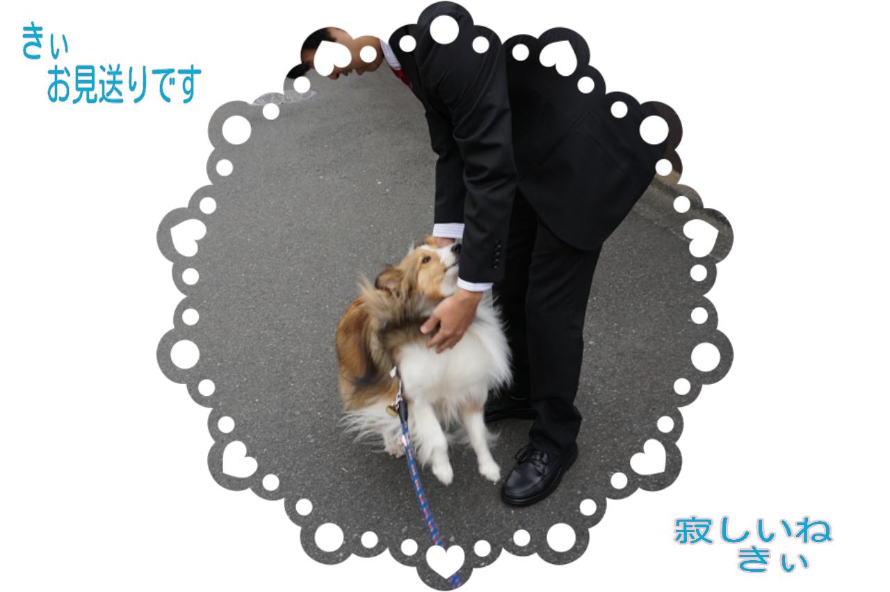 2015-04-01-10-54-01_deco.jpg