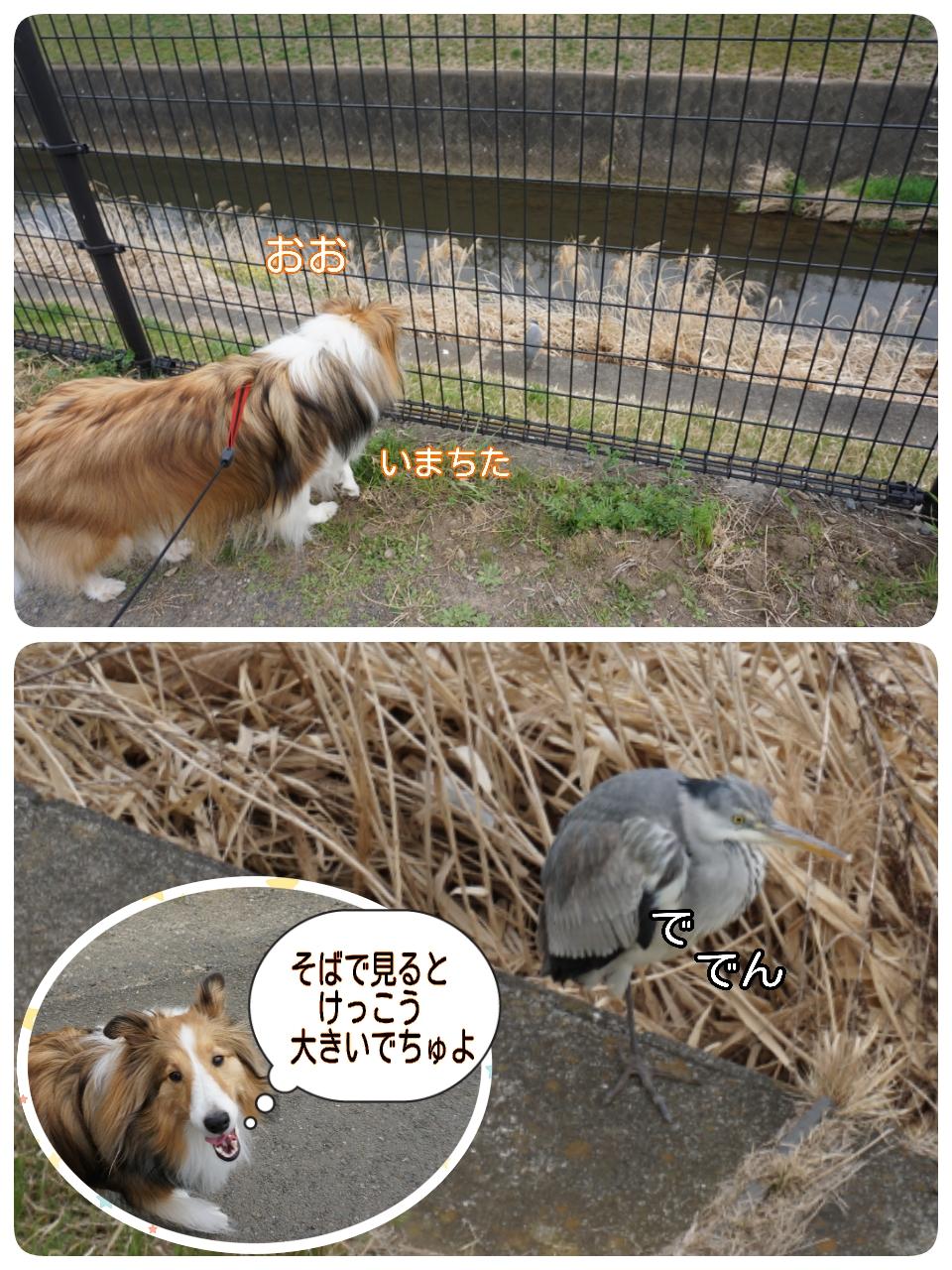 2015-04-01-14-37-25_deco.jpg