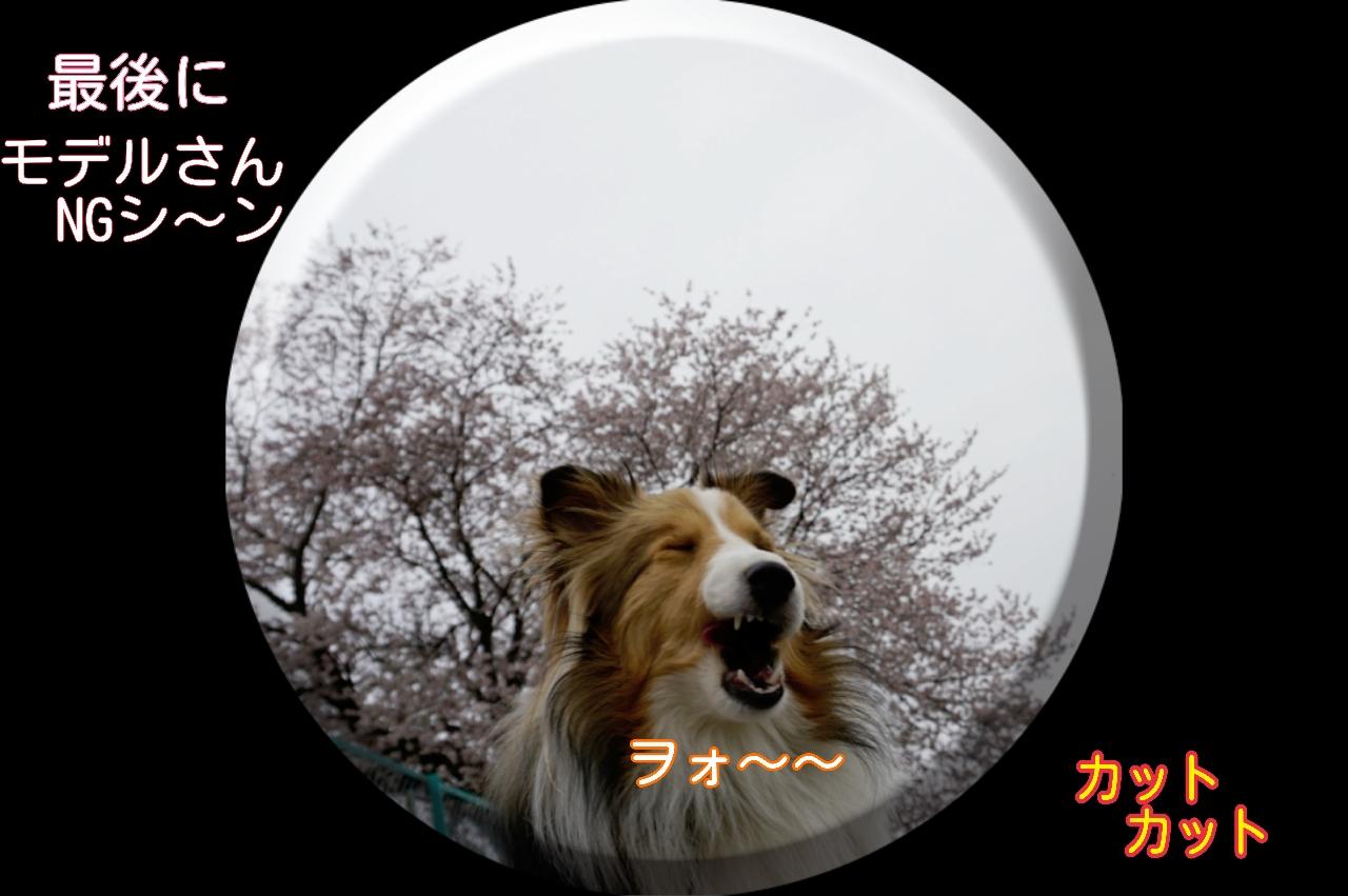 2015-04-01-14-42-58_deco.jpg