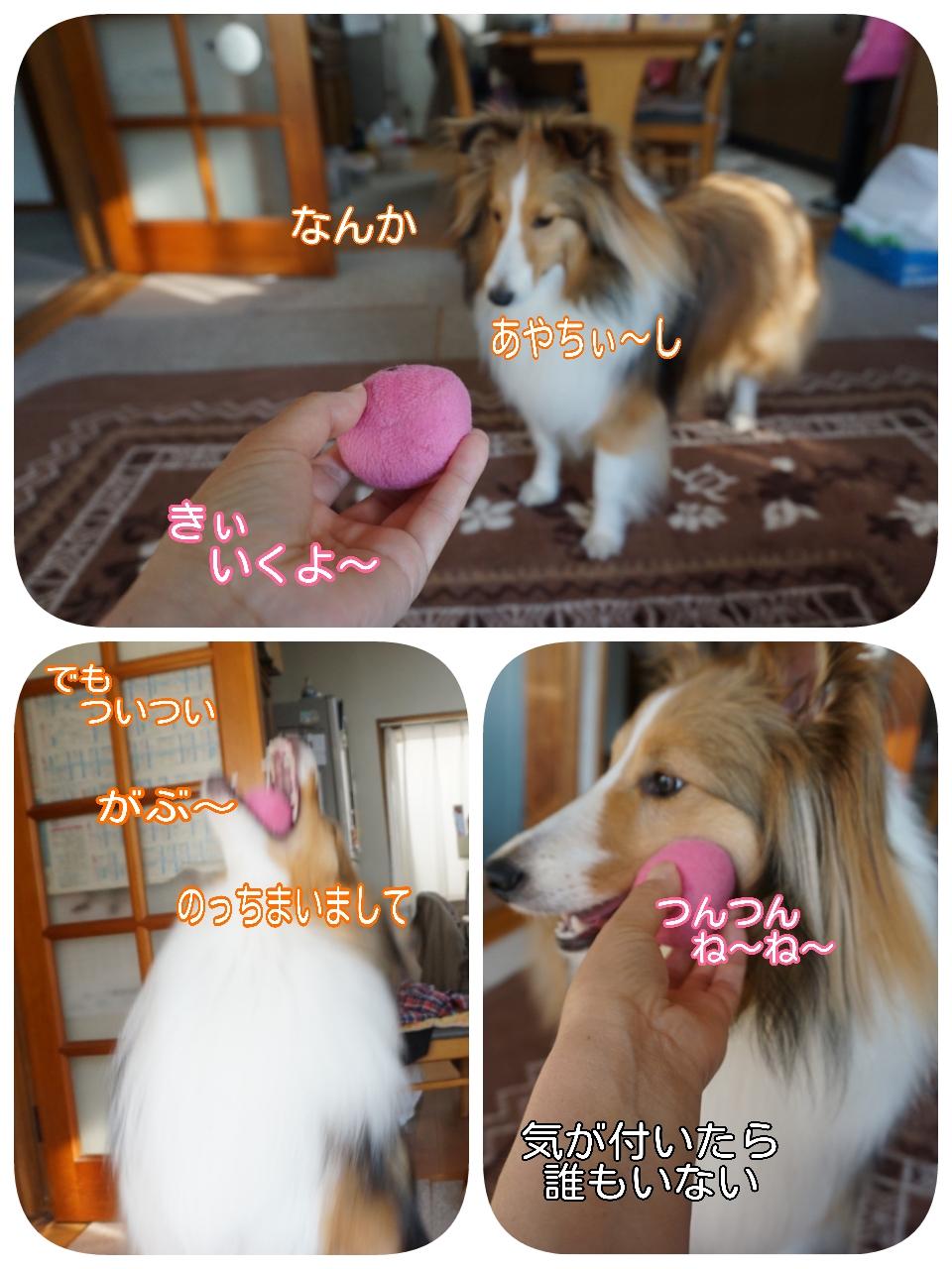 2015-04-06-09-00-51_deco.jpg