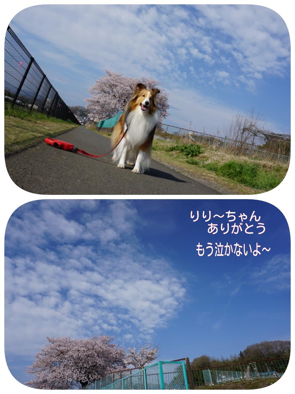 2015-04-06-09-59-01_deco.jpg