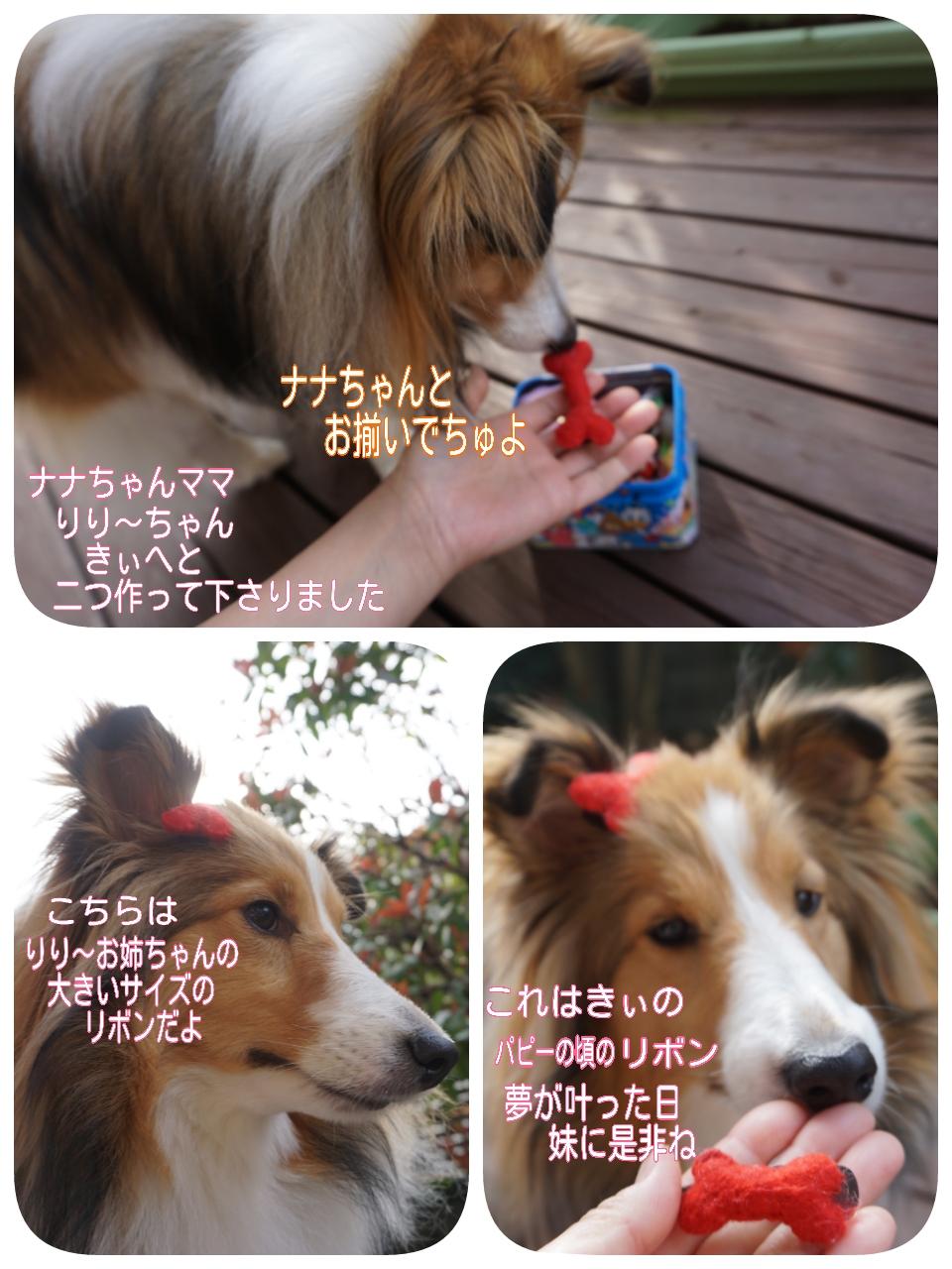 2015-04-09-11-55-26_deco.jpg