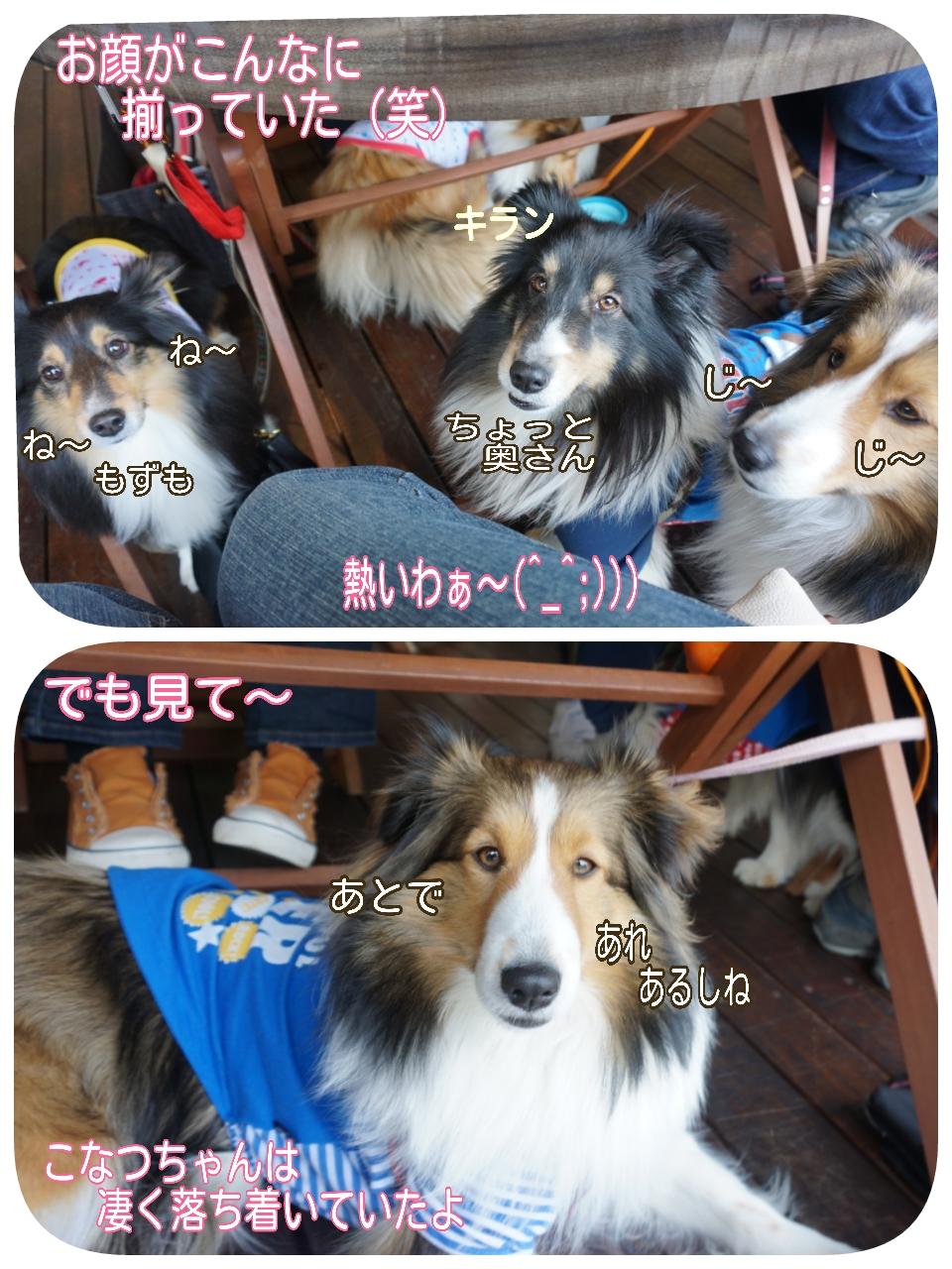2015-04-13-14-27-56_deco.jpg