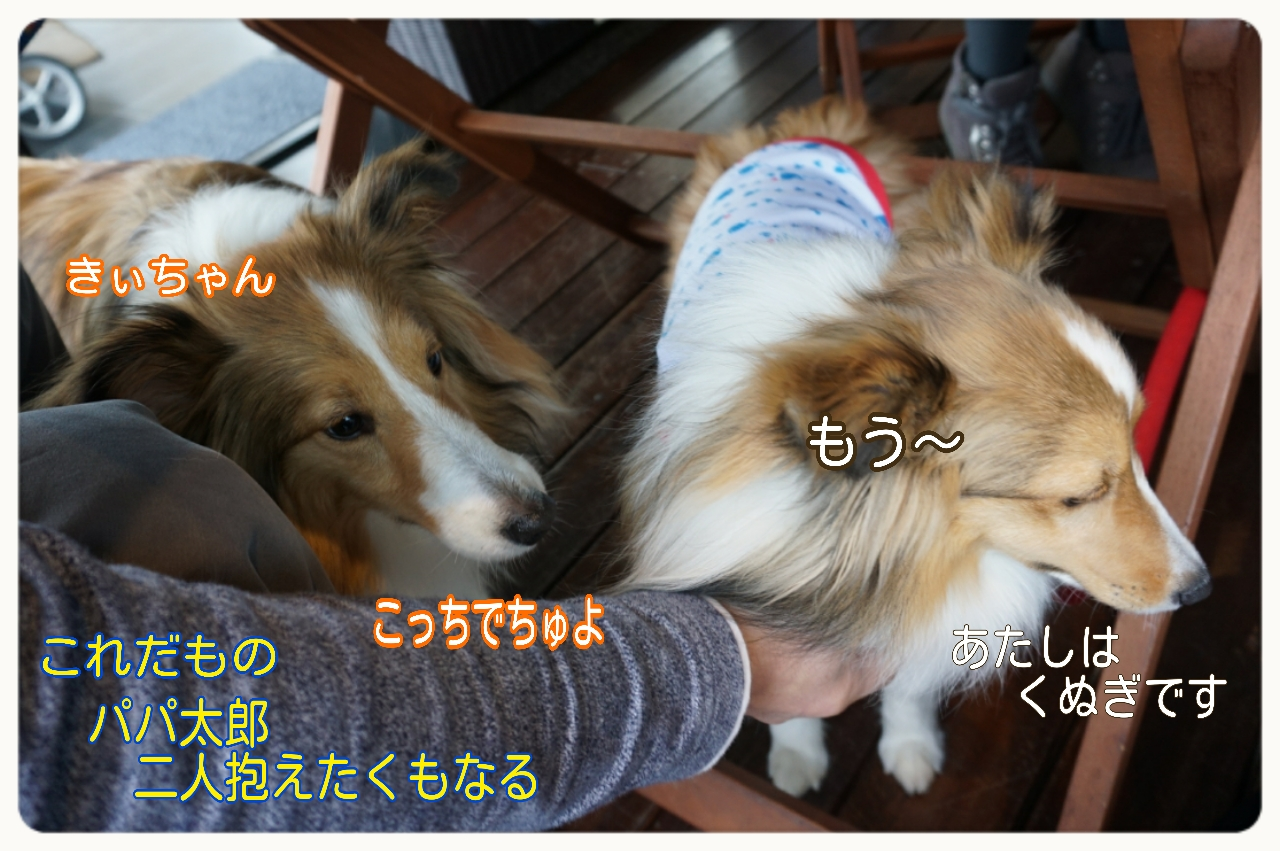 2015-04-13-15-02-02_deco.jpg