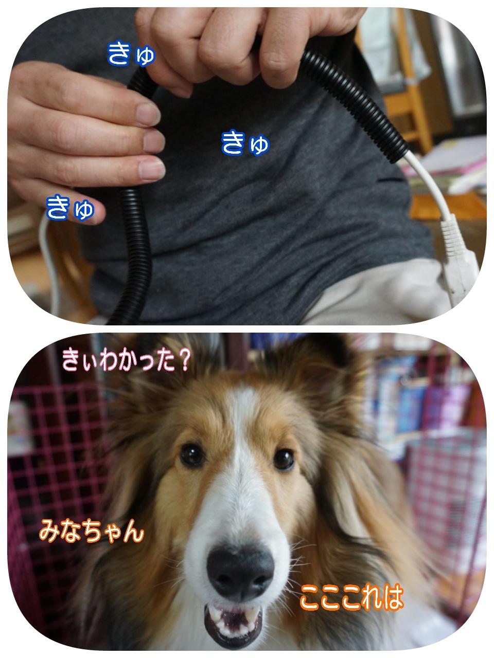 2015-04-19-16-43-10_deco.jpg
