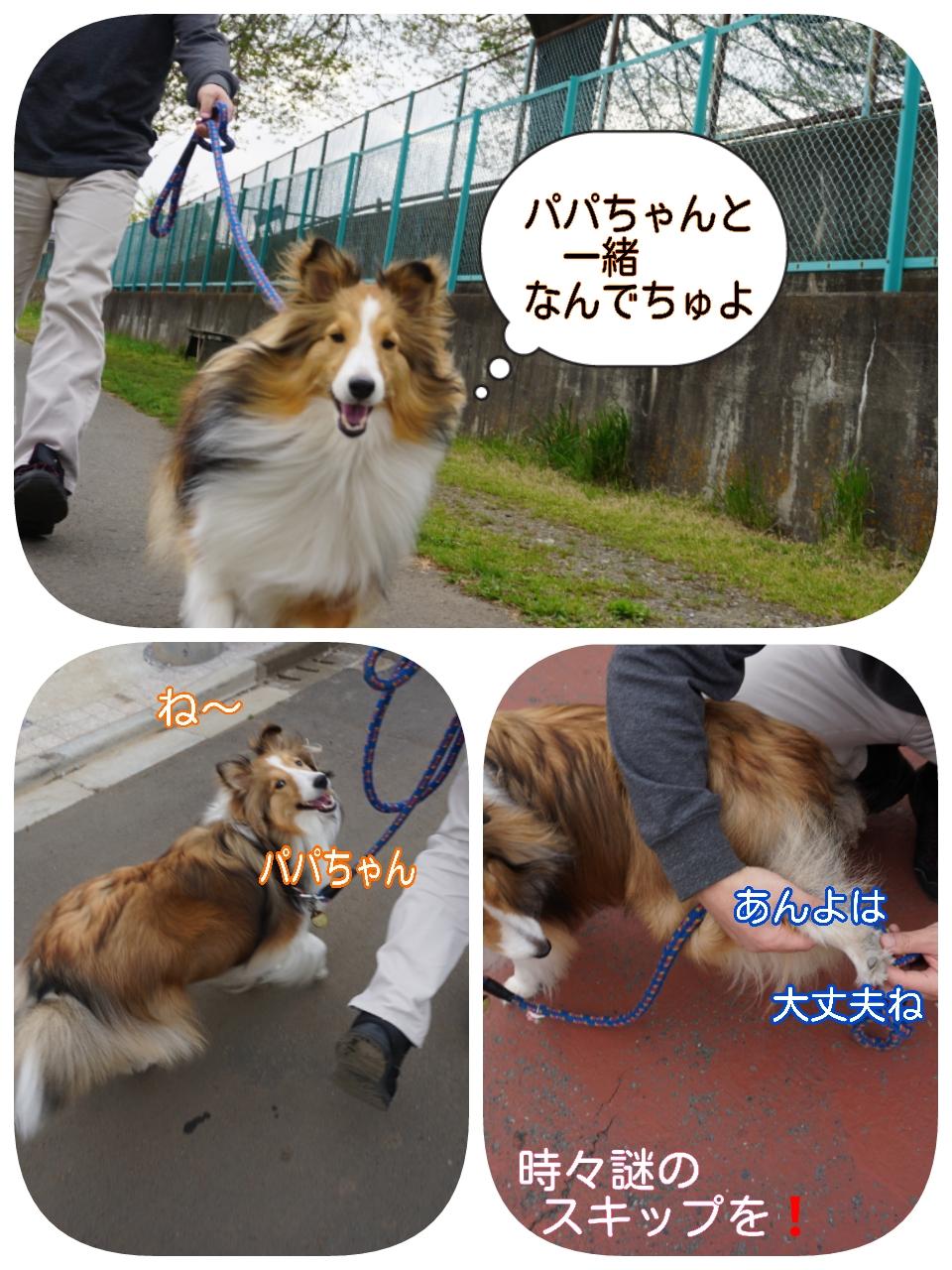 2015-04-19-19-29-56_deco.jpg