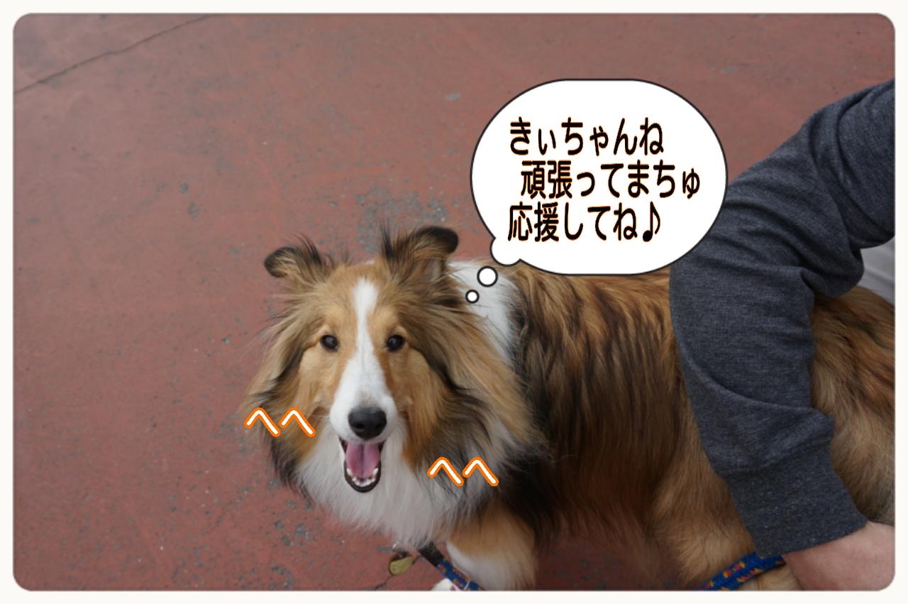 2015-04-19-19-51-01_deco.jpg
