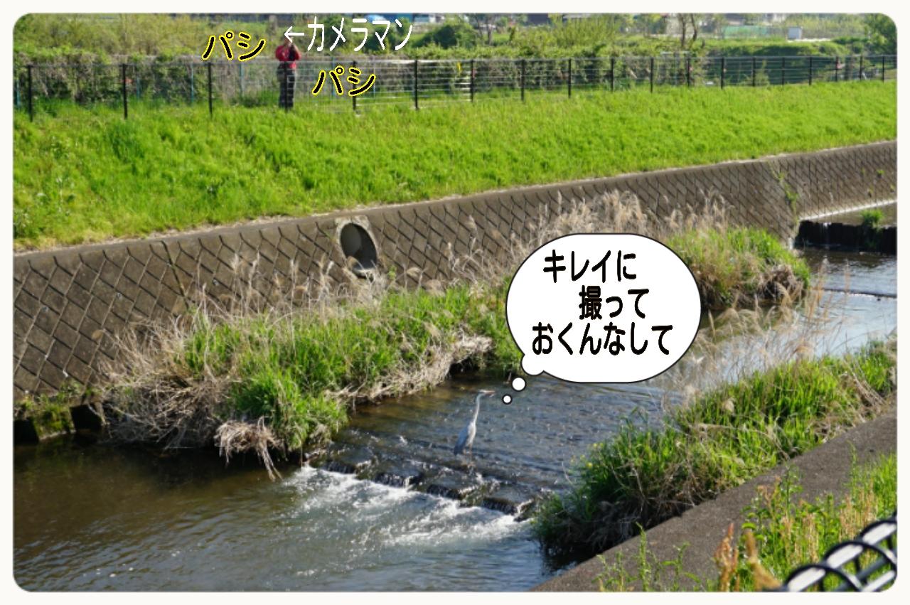 2015-04-27-17-05-06_deco.jpg