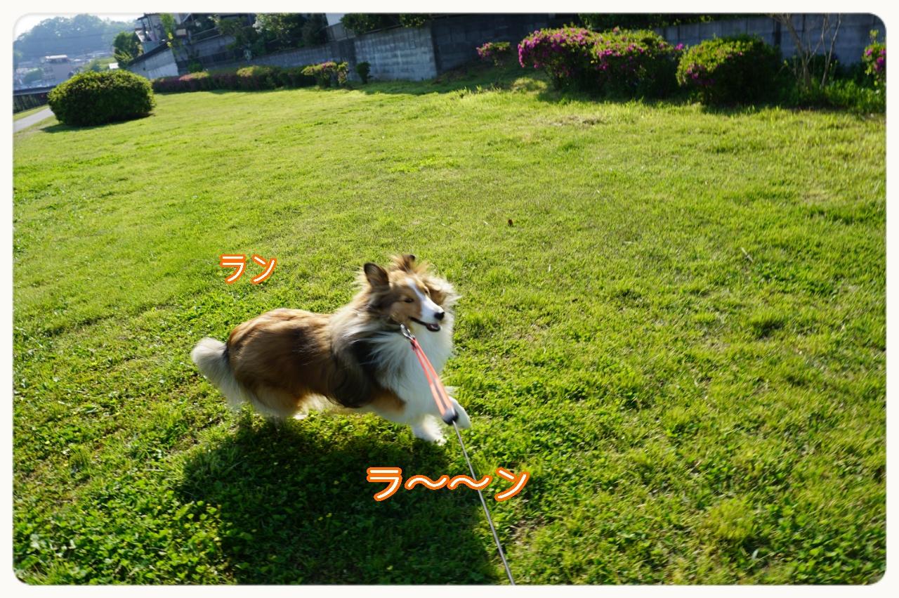 2015-04-27-20-18-53_deco.jpg