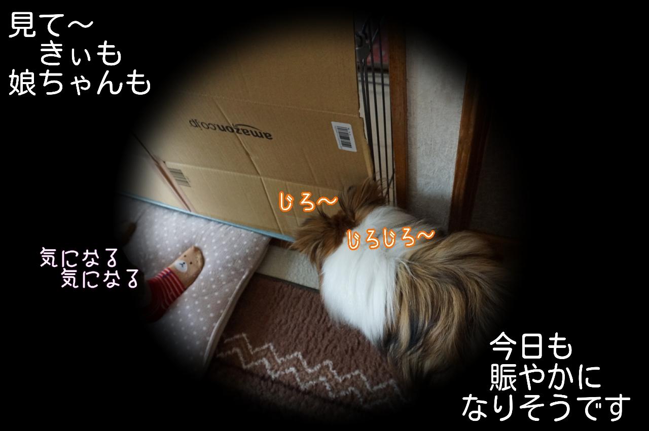 2015-05-07-05-40-45_deco.jpg