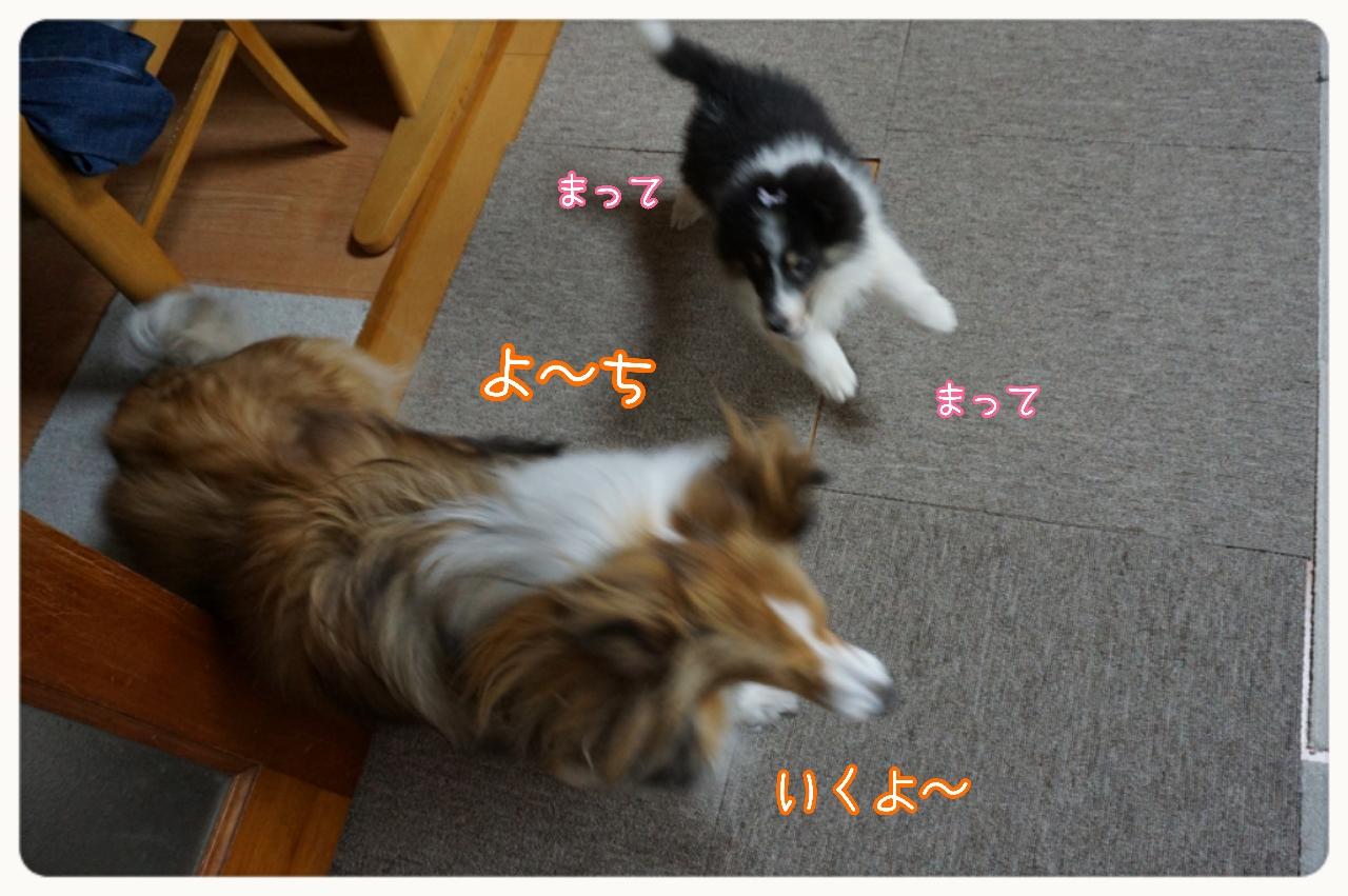 2015-05-07-12-33-26_deco.jpg